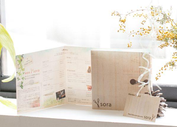 sora-leaf